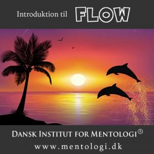 Introduktion til FLOW